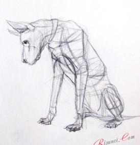 Рисунки карандашом эскизы