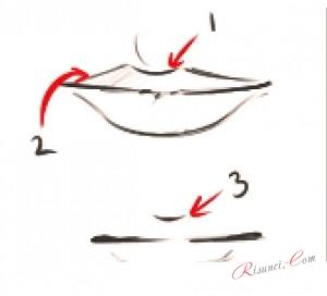 Схема губ