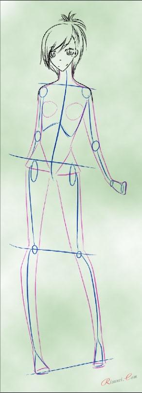 приблизительная форма тела