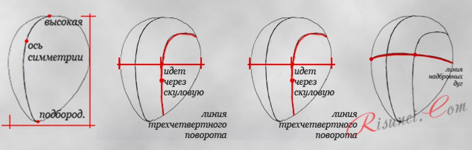 рисование линий головы