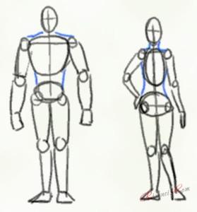 мускулистый мужчина и стандартная женщина