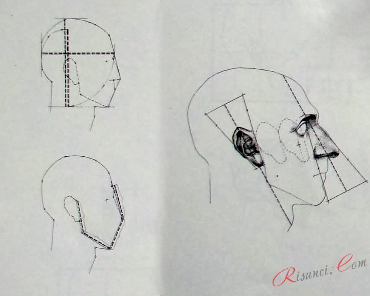 Пошаговый разбор рисования головы