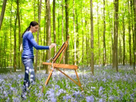 Картинки этюдов природы карандашом