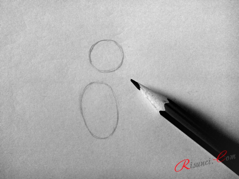 Рисуем круг, а немного ниже – овал
