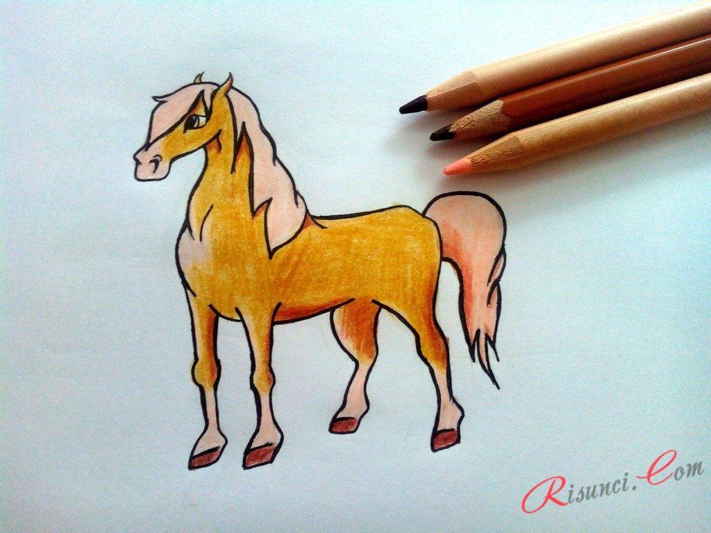 Осталось задать цвет тела лошади