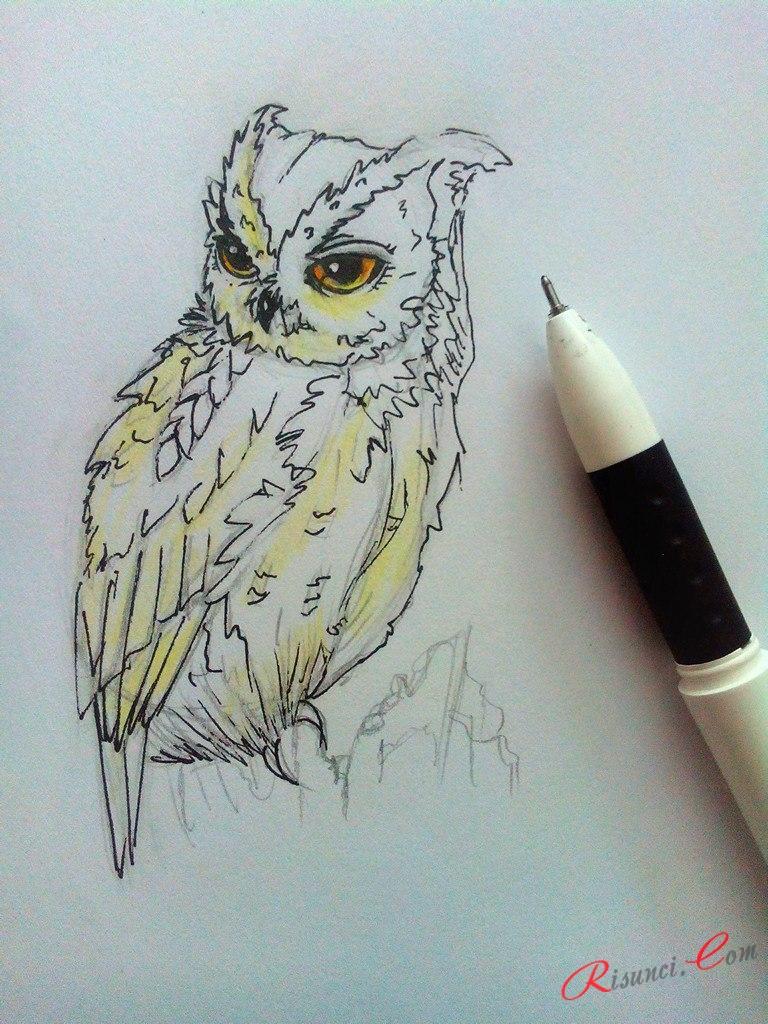 прорисуем ручкой все туловище совы