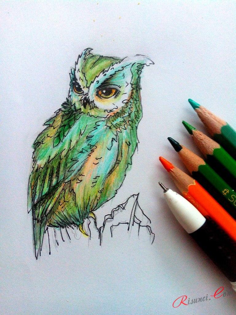 детализируем сову с помощью ручки