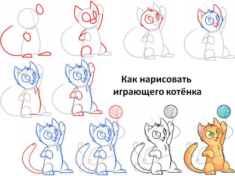 как нарисовать мордочку котенка с милыми глазами, фото пошагово 5