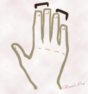 длина пальцев рук аниме