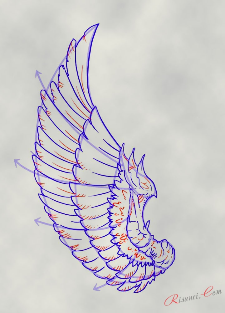 продолжает крылья рисунок карандашом знает как