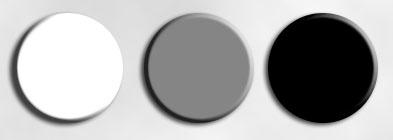 серый, белый и черный цвета