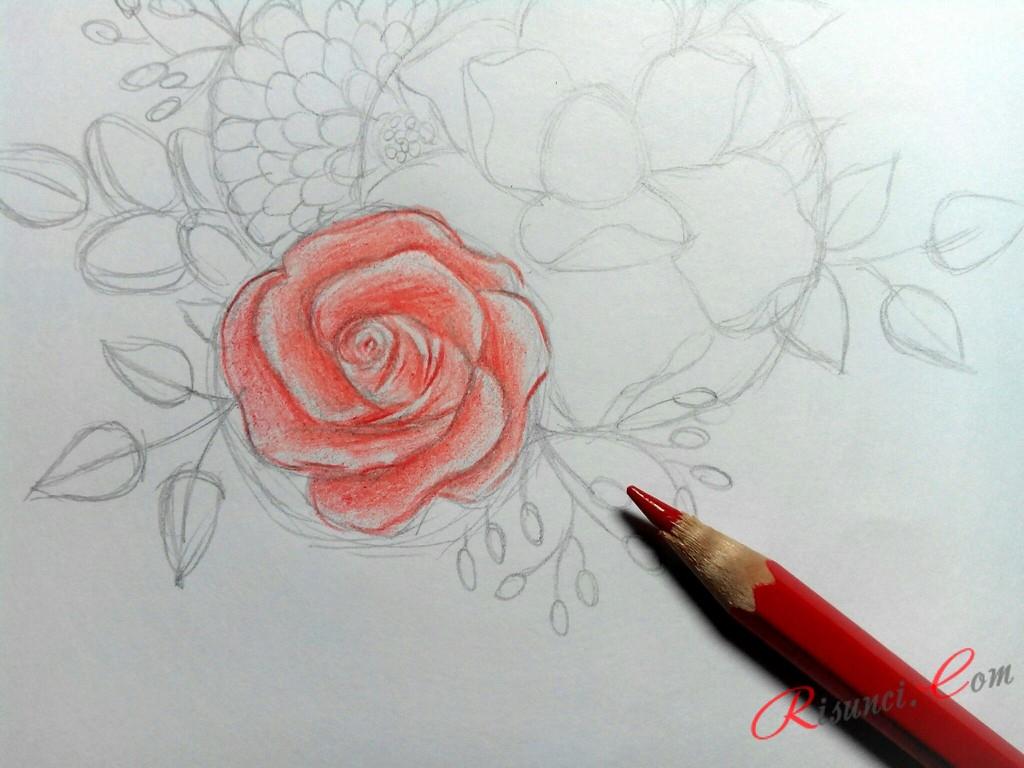 прорисуем розу