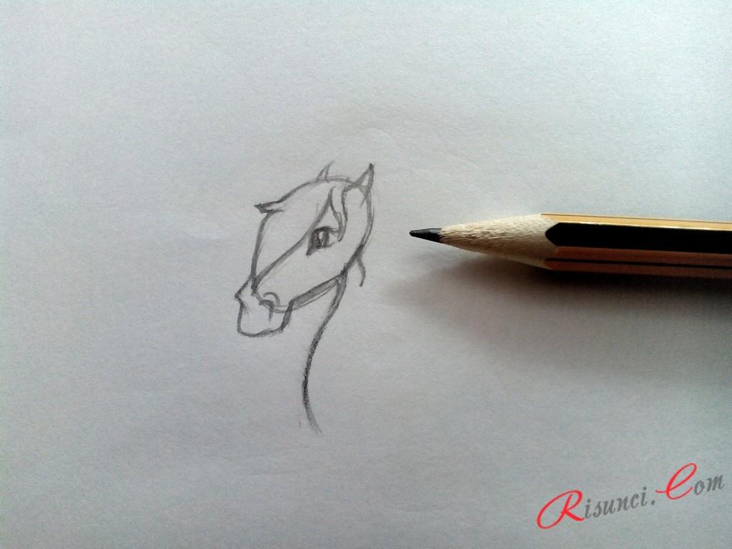 Добавим глаз и уши животного