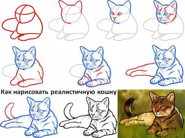 как нарисовать котенка с милыми глазами, поэтапно на фото