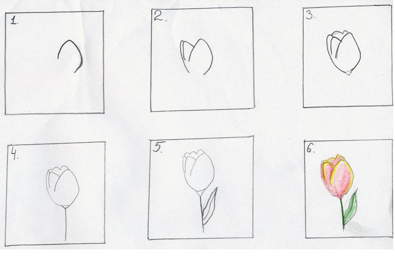 поэтапное рисование карандашом открытки эш, музыкального