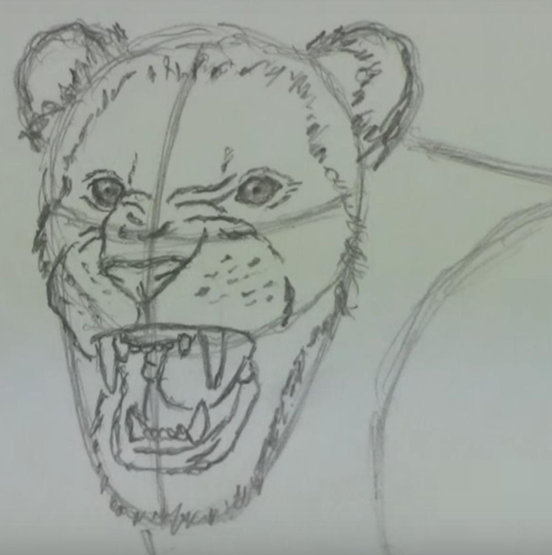 кисунок злого льва карандашом, как нарисовать фото 3