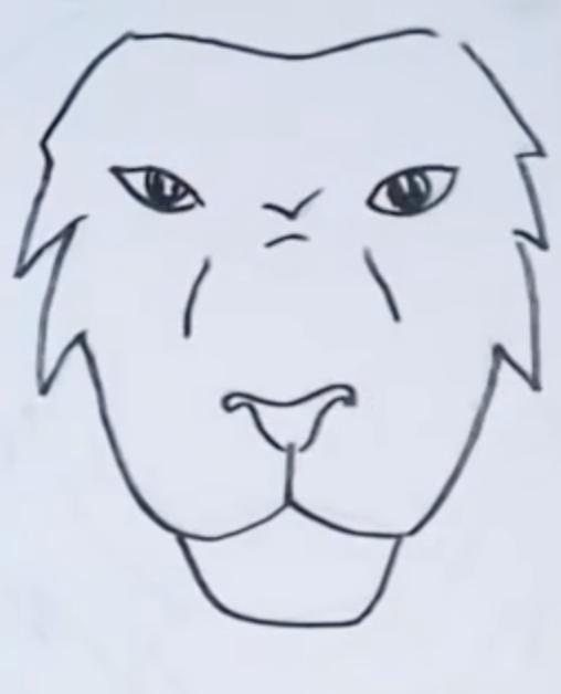рисунок головы льва карандашом фото 2