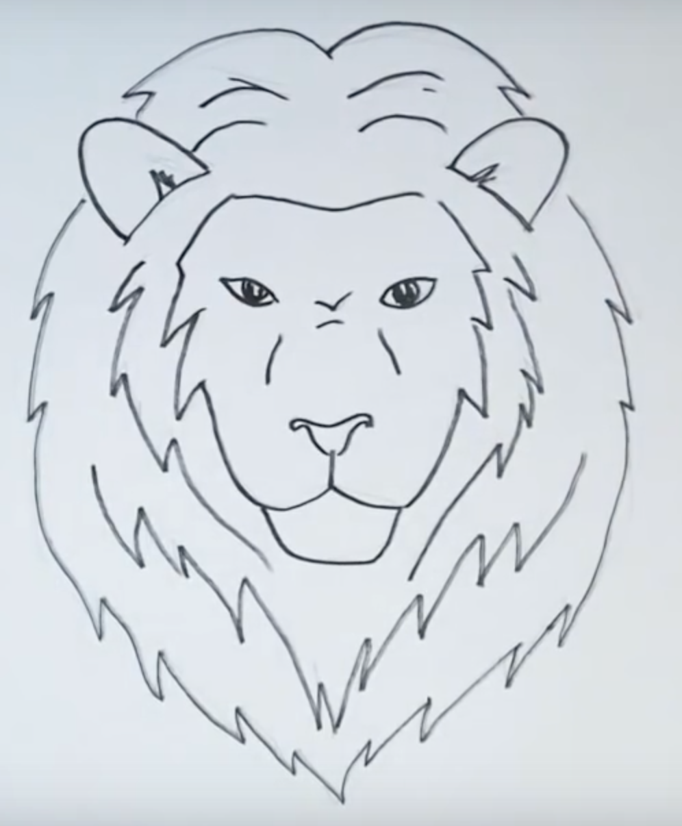 рисунок головы льва карандашом фото 4