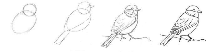 рисунок снегиря карандашом на фото, идеи изображения фото 1