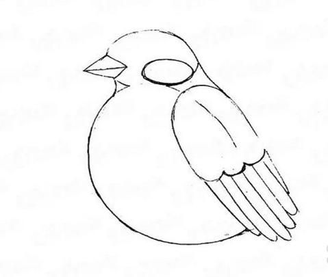 снегирь рисунок карандашом, как нарисовать на ветке мастер-класс + фото 3
