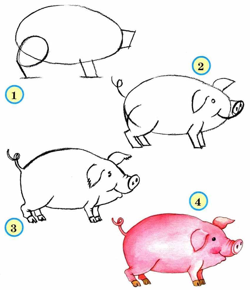 как поэтапно нарисовать свинью (символ 2019 года) фото 1
