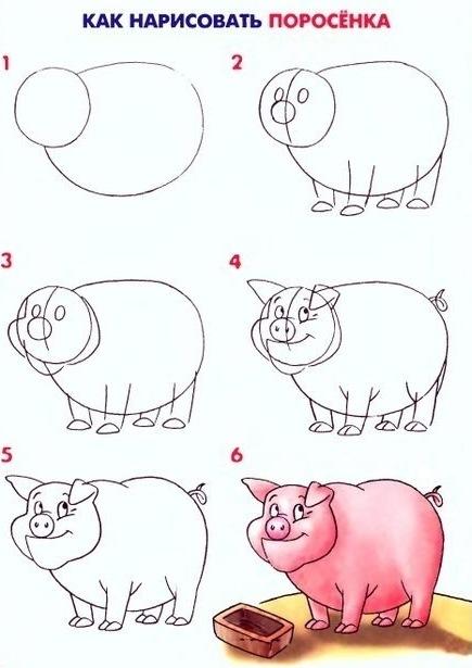 как поэтапно нарисовать свинью (символ 2019 года) фото 5