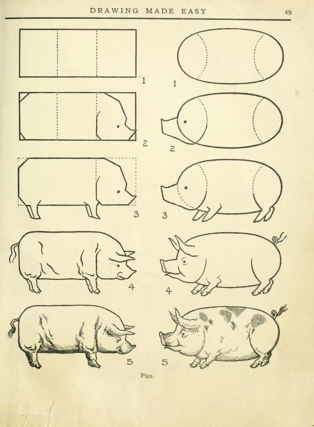 как поэтапно нарисовать свинью (символ 2019 года) фото 6