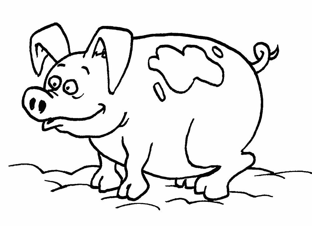 раскраска Символ года 2019 - Желтая Земляная Свинья фото 8