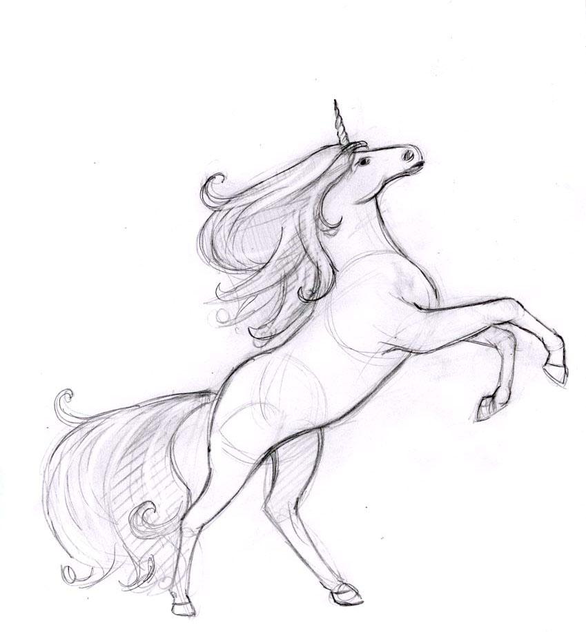 единорог рисунок карандашом для срисовки, фото подборка и идеи 2