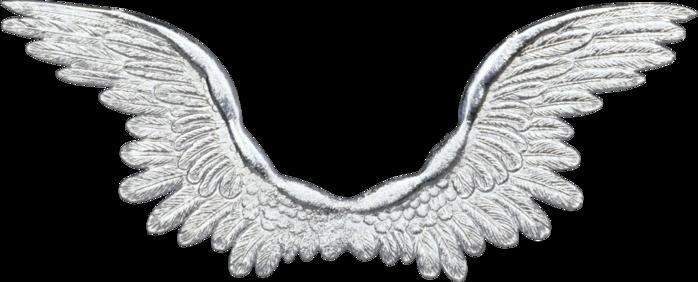 мастер-класс: как нарисовать крылья