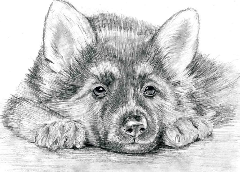 идея №6 - собака фото 2