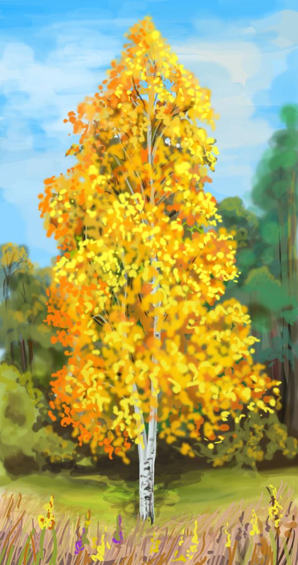 рисунок березы карандашом осенью, фото 1