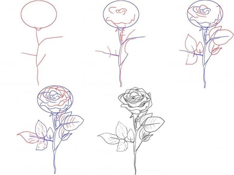самые легкие рисунки карандашом, фото идеи 3