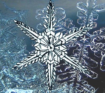 снежинка в форме цветочка на Новый год 2019 - рисунок карандашом + фото 6