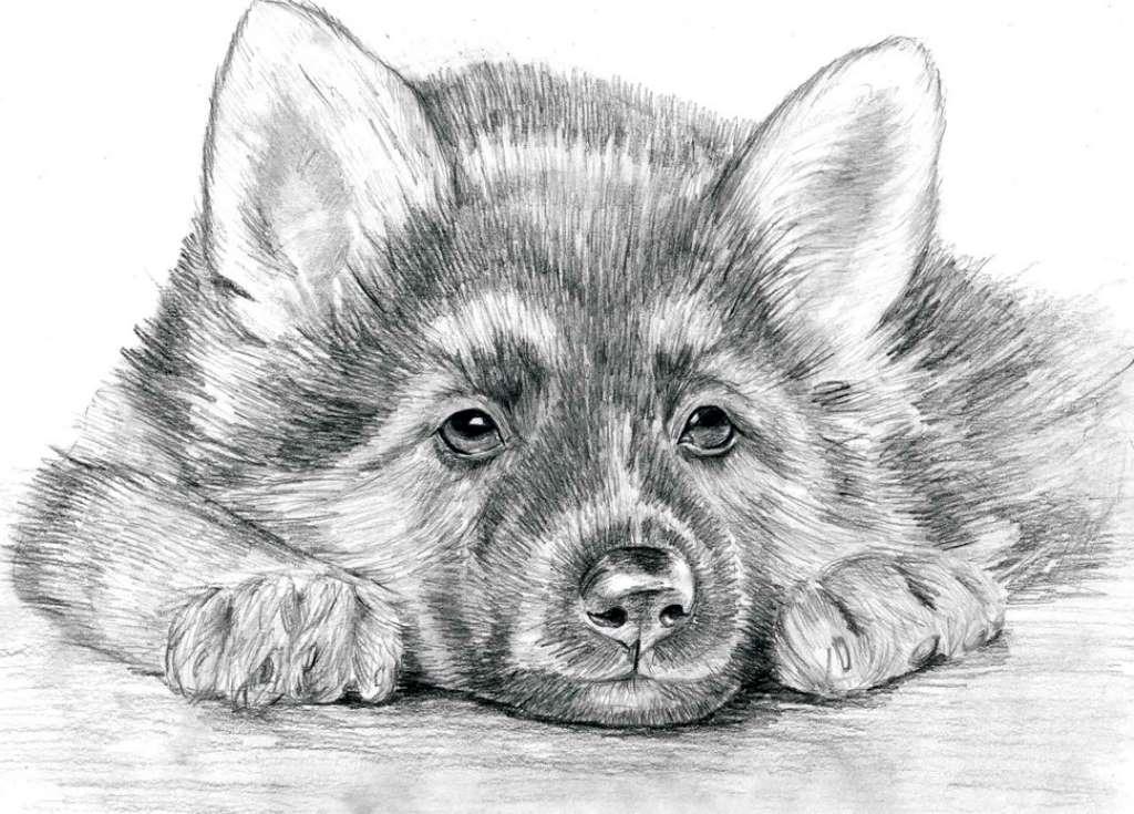 черные рисунки для срисовки, фото идеи 3