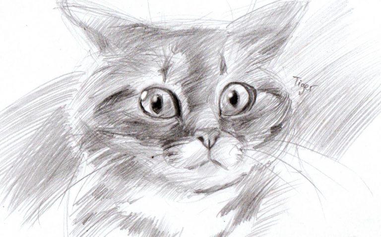 что нарисовать когда скучно для девочек, другие фото идеи 7