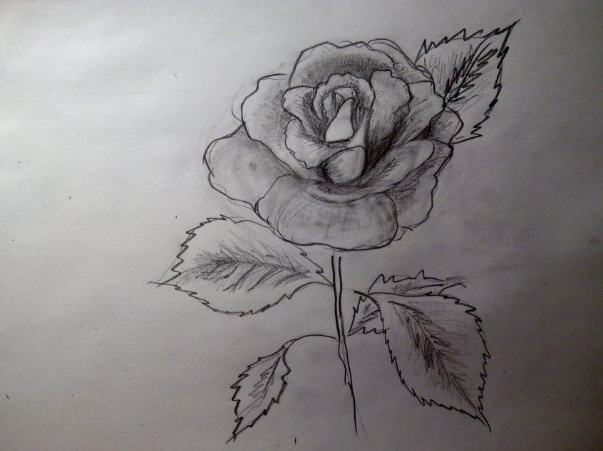 что нарисовать когда скучно для девочек, другие фото идеи 9