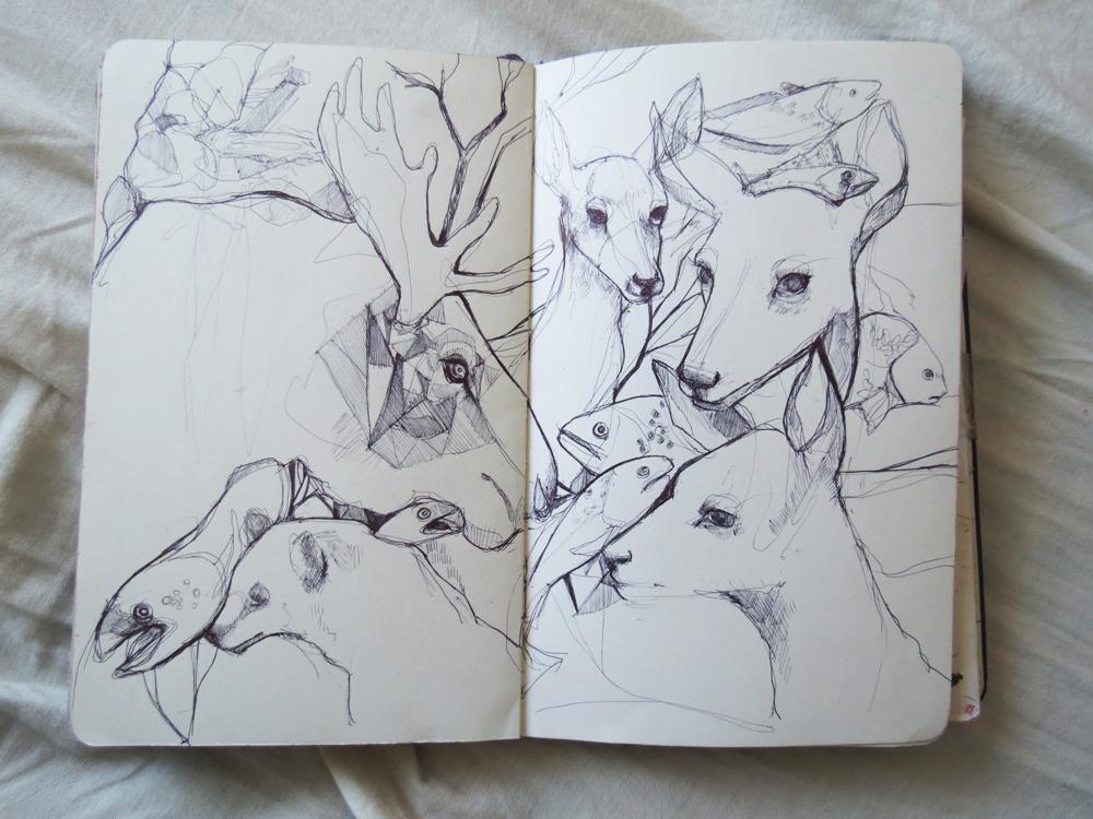 зарисовка диких и домашних животных фото 1