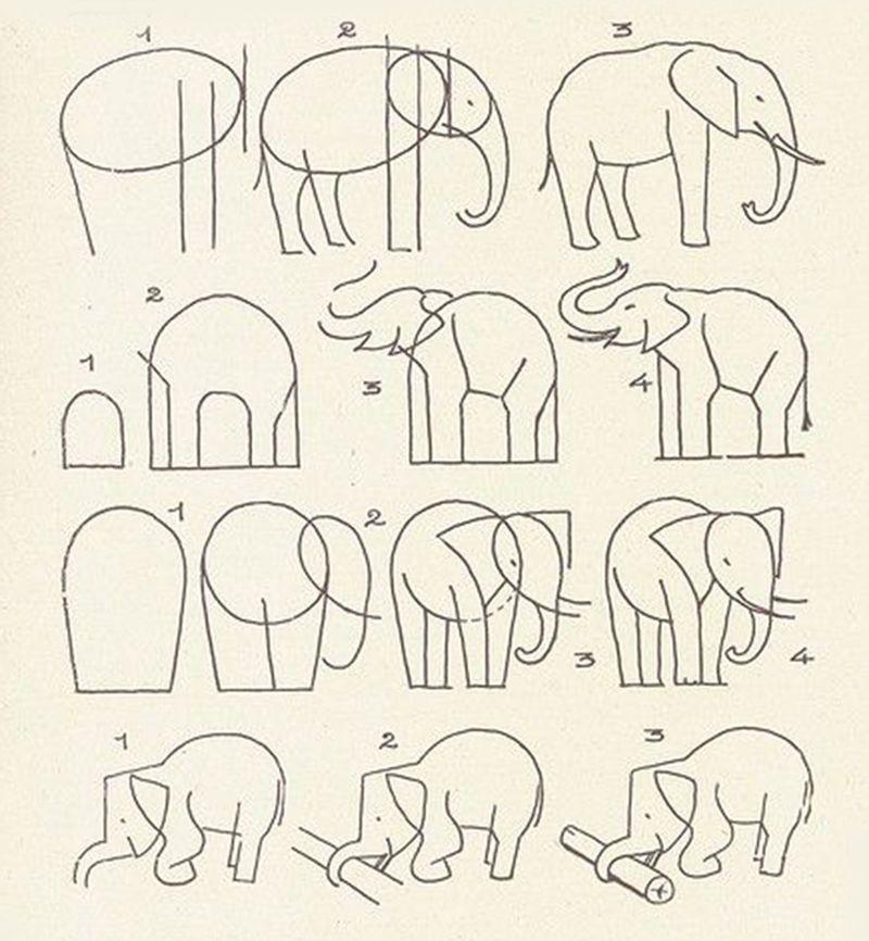 рисунок слона поэтапно карандашом фото 2