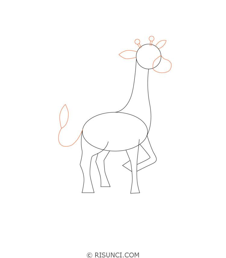 картинки жираф поэтапно применении комбинации