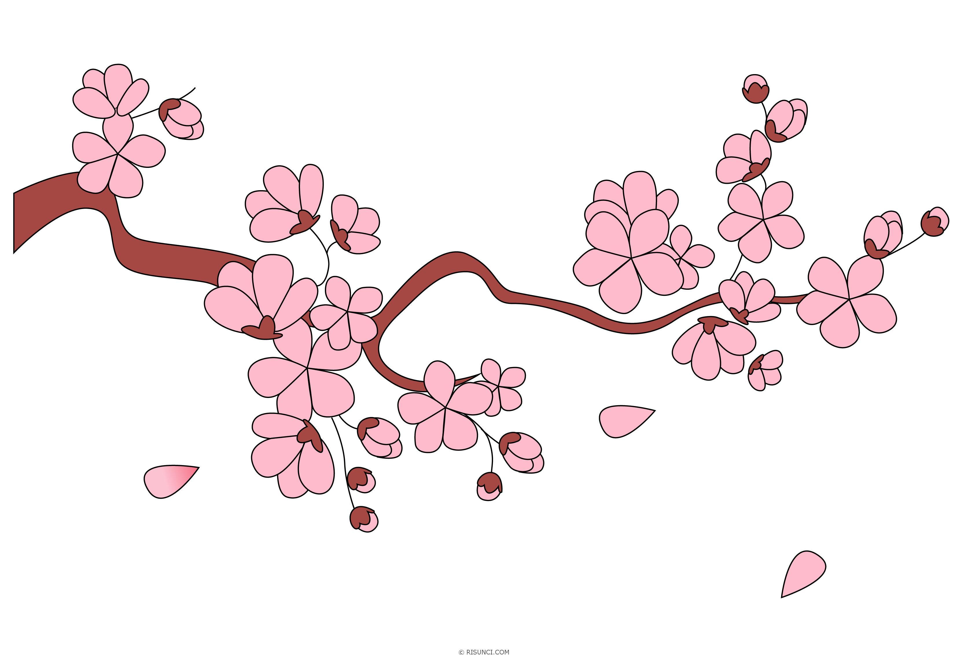 Рисовать ветку сакуры картинки