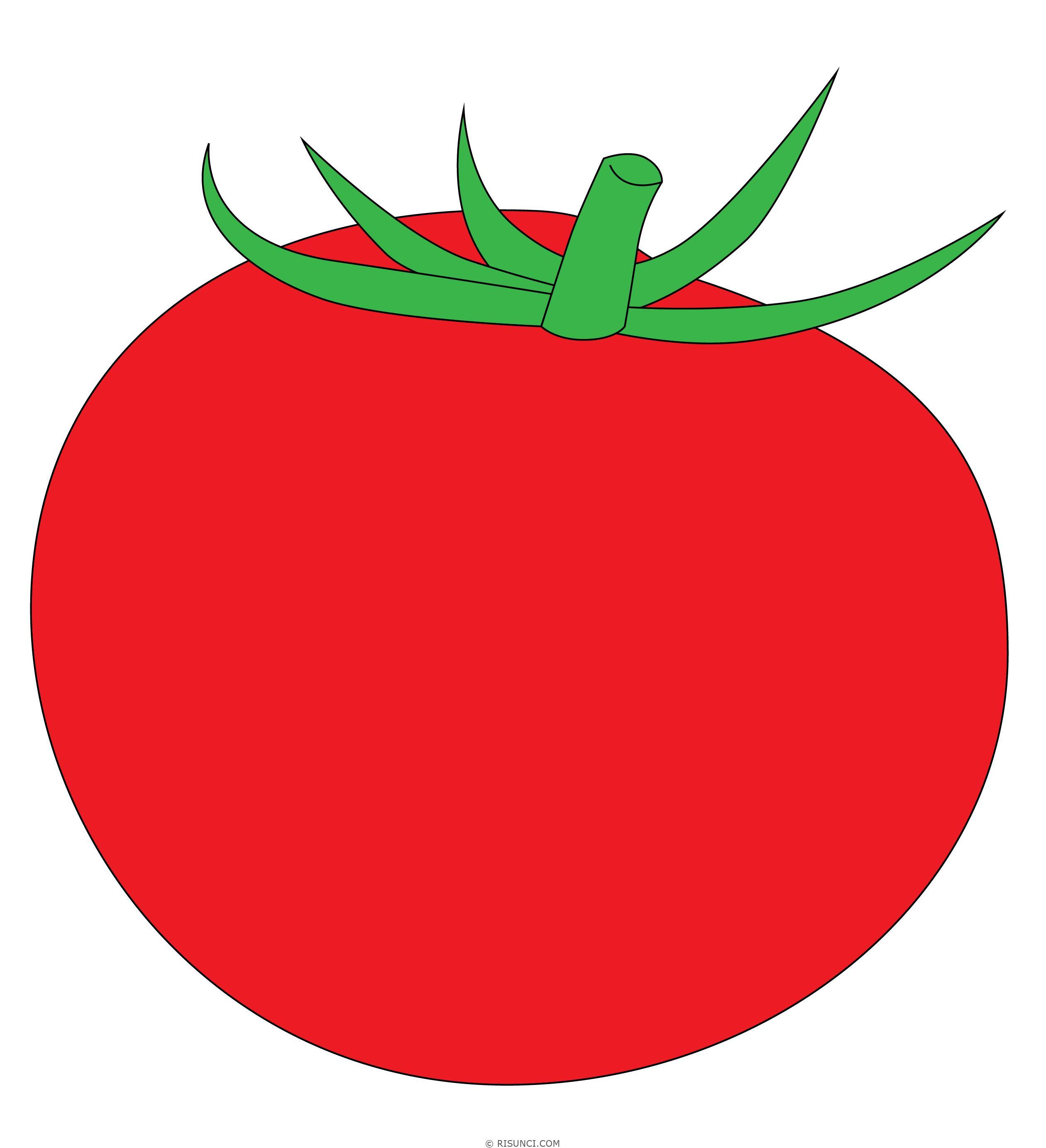 картинка помидор рисовать сюда подойдет как