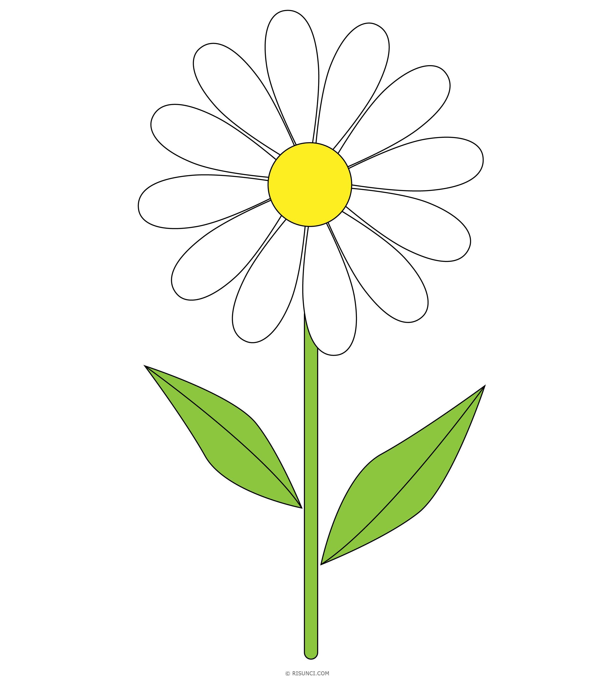 Повар гифка, ромашка картинки для детей нарисованные